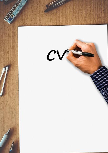 voorbeeld-CV